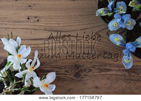 Wooden Background With German Text Alles Liebe Zum Muttertag Means Happy Mothers Day. Spring Flowers Like Grape Hyacinth And Crocus. Aged Or Vintage Style