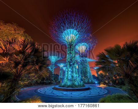 Beautiful trees at Gardens by the Bay, Singapore