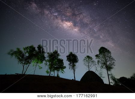 Milky Way, Night Sky With Trees And Tent On Hill Ni Krabi, Thailand.