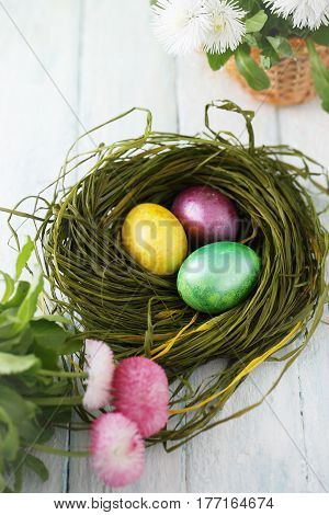 green nest with painted eggs, Easter background