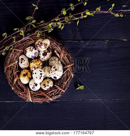 Easter Still Life. Easter Eggs.