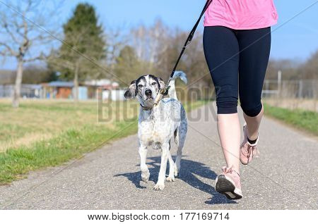Fit Athletic Young Woman Running With Her Dog