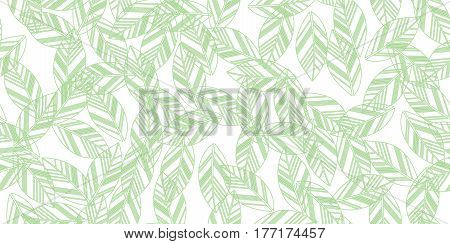 Leaves seamless white and green background. Vector illustration.