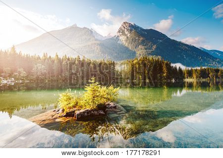 Famous lake Hintersee one of the best places on planet. Рicturesque scene. Location resort Ramsau, National park Berchtesgadener Land, Upper Bavaria, Germany Alps, Europe. Explore the world's beauty.