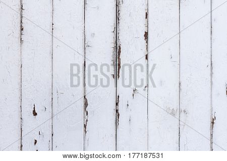 White Painted Shabby Wood Texture Background Detail