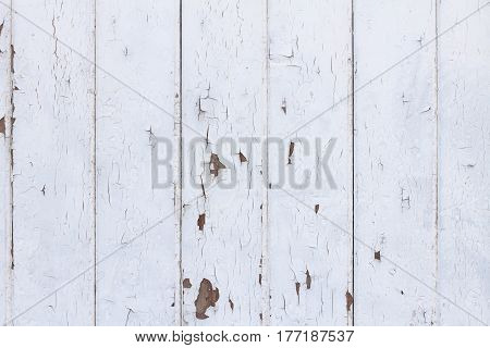 White Wood Texture Background in Shabby Chic Style
