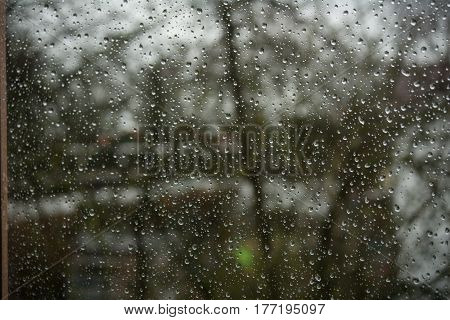 Raindrops on a window seen closeup during a rainstorm