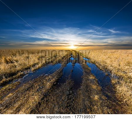 sunset scene over dirt road in spring steppe