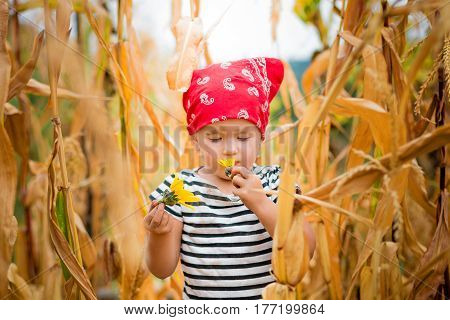 Dirty Child Smelling A Flower In Her Hand In Red Bandana And Stripe Tee In The Cornfield. Dry Corn