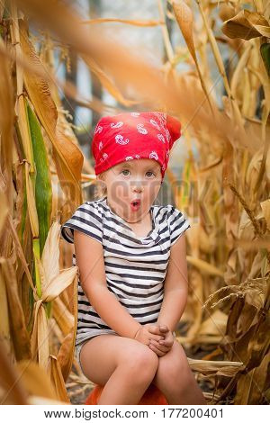 Child In Red Bandana And Stripe Tee  Sits On A Pumpkinin The Cornfield. Dry Corn. Wow
