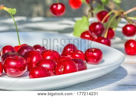 Ripe cherries on a white plate on a background of a branch with red berries and green leaves in the garden on a sunny summer day close-up. Focus on the foreground the background is blurred