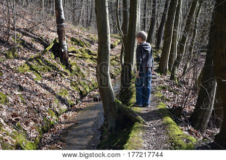 Small boy in the wood, stands in a brook and looks to the water
