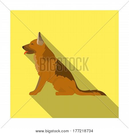 Police dog for detaining criminals. Trained shepherd for prison.Prison single icon in flat style vector symbol stock web illustration.
