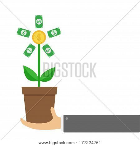 Businessman hand holding Growing paper money tree big shining coin with dollar sign Plant in the pot. Financial growth concept. Successful business icon. Flat design. White background Isolated. Vector