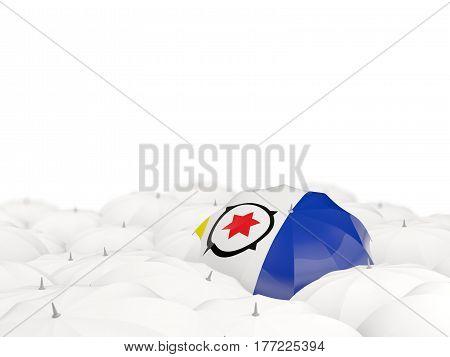 Umbrella With Flag Of Bonaire