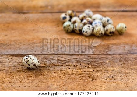 Quail Eggs On Old Brown Wooden Background