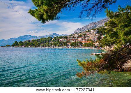 beautiful summer landscape through pines with Adriatic sea and coastline in Brela, Makarska Riviera, Croatia