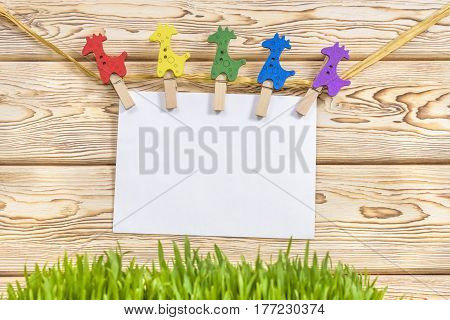 clothespin hanging with blank paper on wooden background and green fresh grass