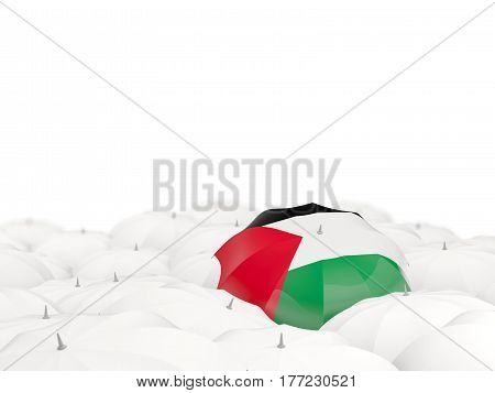 Umbrella With Flag Of Palestinian Territory