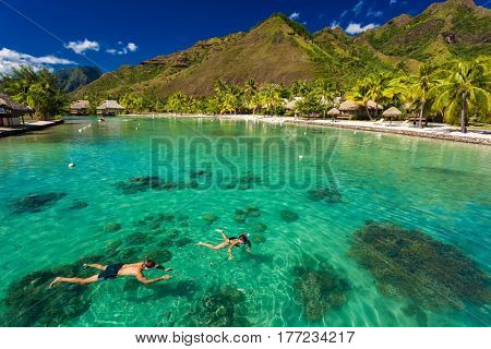 Young couple snorkeling over reef next to resort on a tropical island