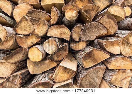 Background from wooden logs Birch, oak, coniferous, ash. Horizontal image