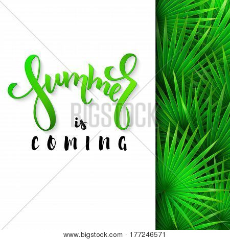 vector illustration of hand lettering poster - summer is coming with paper sheet on a background fan palm leaves.