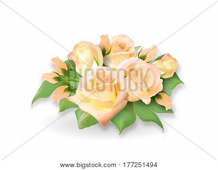 Roses bouquet. Tea-rose delicate yellow pink bouquet. Realistic rose. Not trace. Vector eps 10.
