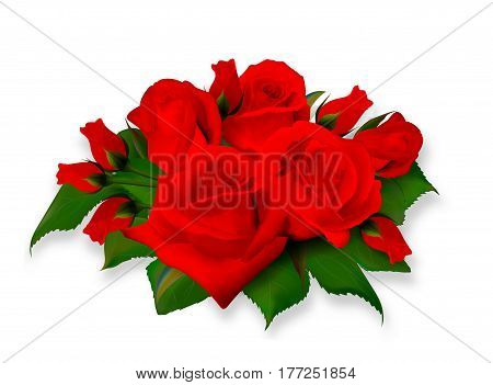 Roses bouquet. Tea-rose delicate bright red bouquet. Realistic rose. Not trace. Vector eps 10.