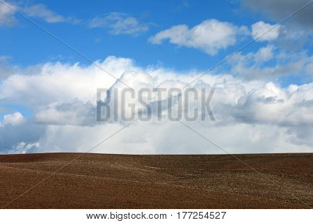 Rolling Farms Fields with Bright Blue Sky, Palouse Washington State