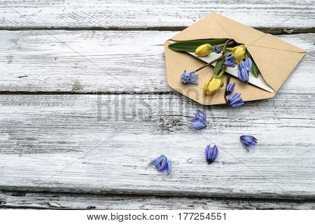 Spring flowers in an envelope on a white wooden surface