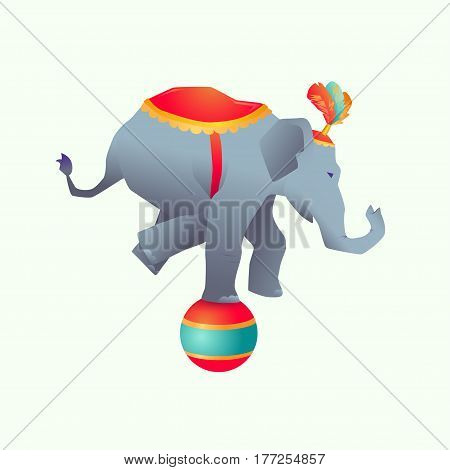 Circus trained wild animals with Gradient performance isolated.