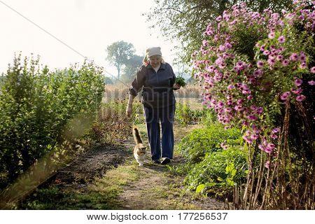 Grandmother and cat. Elderly woman with pet walking in garden. Rural way of life