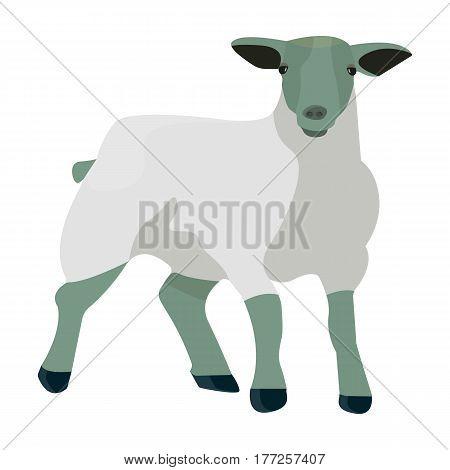 Little white mountain sheep.Scottish fold sheep.Scotland single icon in cartoon style vector symbol stock web illustration.