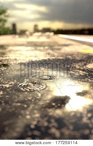3d rendering of raindrops on street puddle in front of blurred sunshine and city