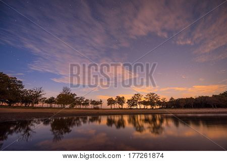 Starry sky beside the sea with trees reflected in the water