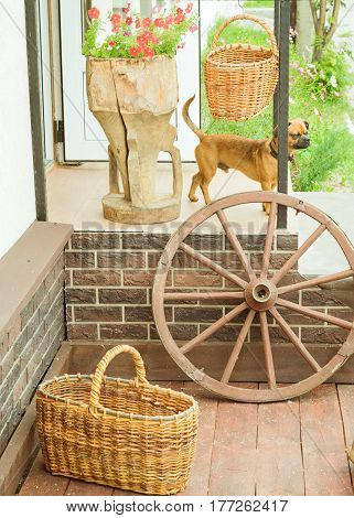 Wheel and baskets on the background of the classical facade. Brown dog on the steps near the house.