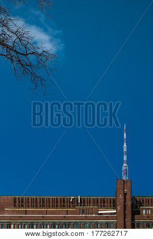 TV tower from Saint Petersburg  botanical garden