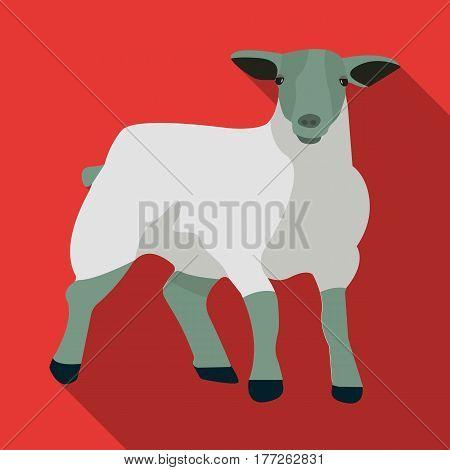 Little white mountain sheep.Scottish fold sheep.Scotland single icon in flat style vector symbol stock web illustration.