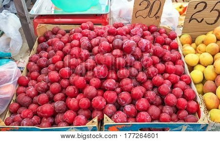 Red plums and apricots for sale on a market.