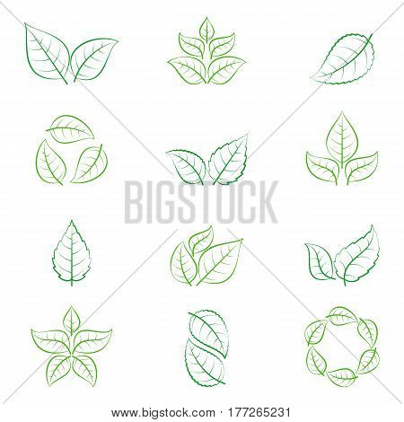 Green leaves of trees and plants isolated on white background. Ecology icons or logo collection