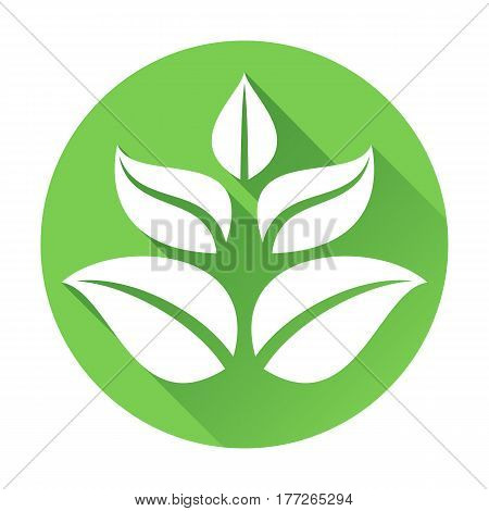 Round flat icon with growing tree or plant leaves