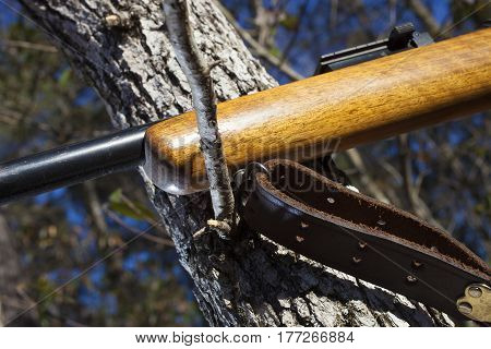 Old hunting rifle using a branch for a steady long shot