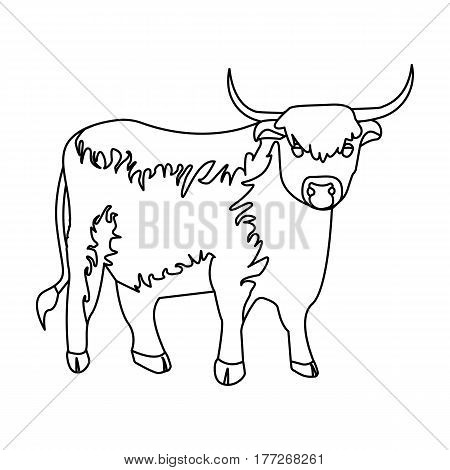 Brown bull with horns.Mountain bull is a symbol of Scotland.Scotland single icon in outline style vector symbol stock web illustration.