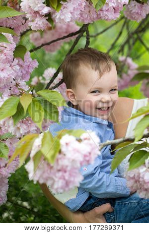 Cute happy baby boy little child with blond hair in blue shirt smiling in mother arms among pink blossoming flowers and green leaves on sunny spring or summer day on natural background