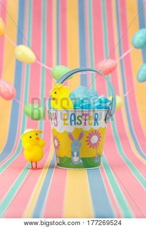 Easter Fete Scene With Chicks And Bucket. Vertical. Copy Space.