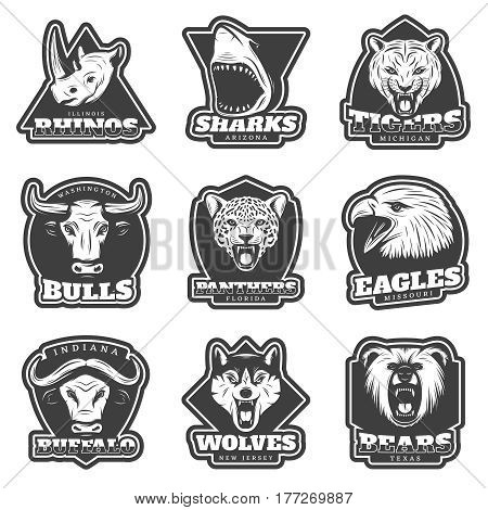 Vintage team sport logos set with wild animals heads in monochrome style isolated vector illustration