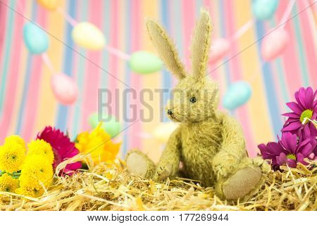 Easter Bunny, Fresh Flowers, Pastel Egg And Stripes Background.