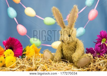 Easter Bunny Rabbit, Fresh Flowers And Egg Garland.