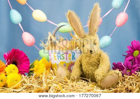 Bunny Rabbit With Tin Easter Bucket In Colourful Scene.