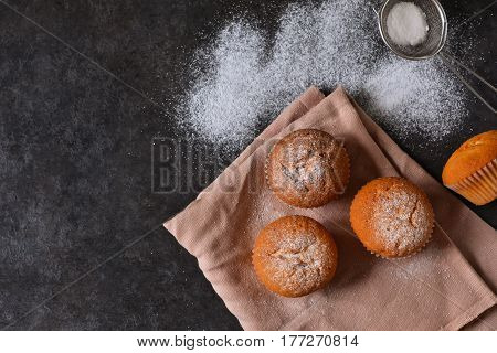Homemade vanilla muffin with icing sugar on a concrete background